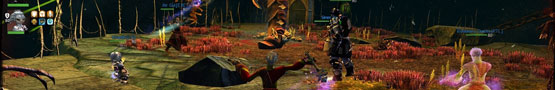 Ring MMO - Being a Good Party Member in MMORPGs